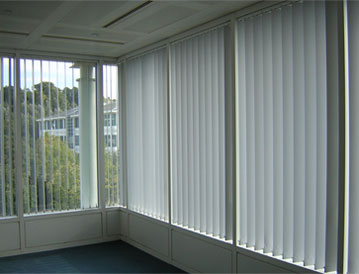Professional & Expert Window Blind Services