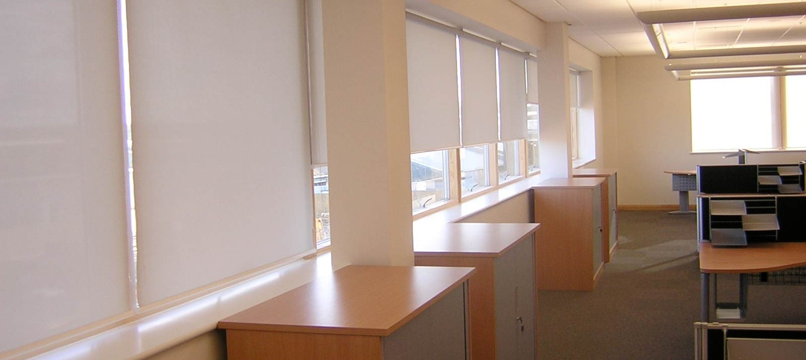 Commercial Window Blinds